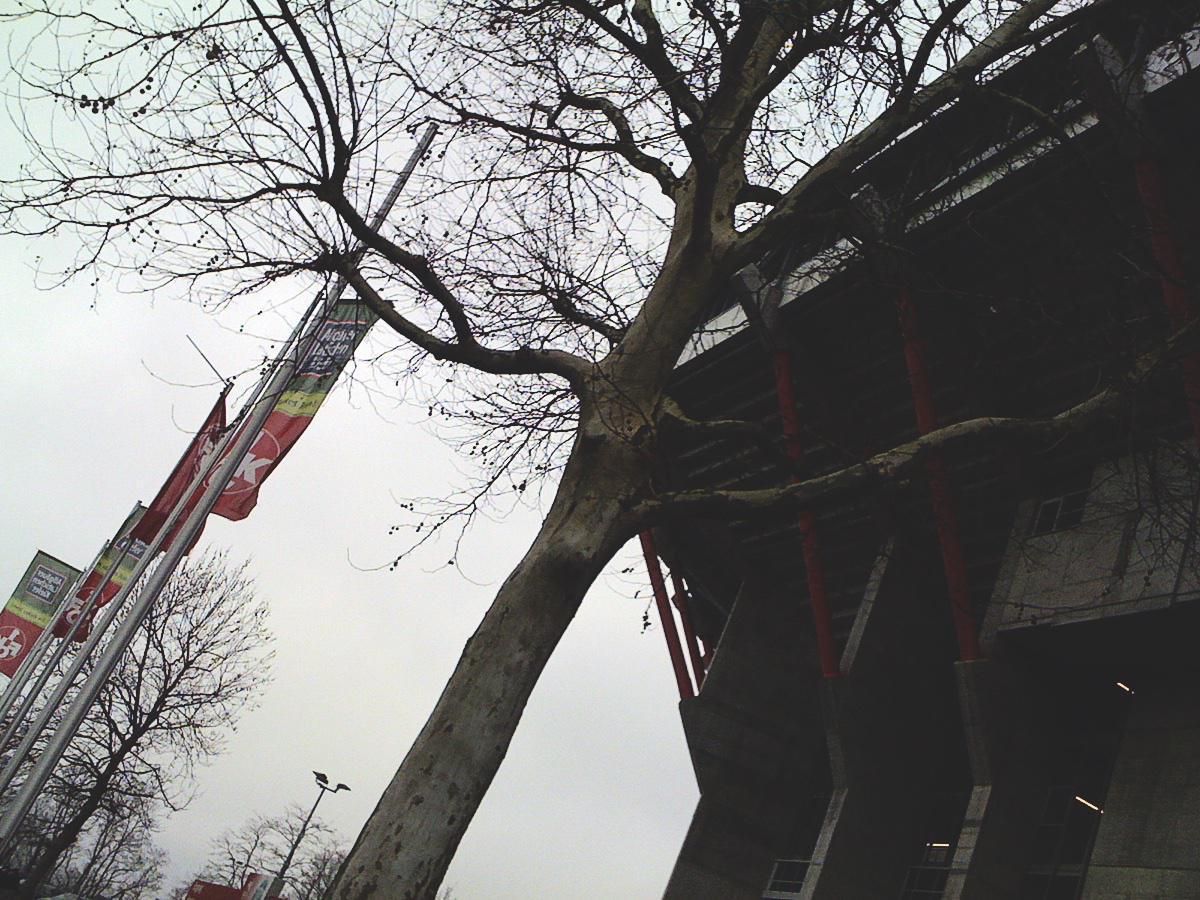 Der Betzenberg zu Kaiserslautern auf einem Smartphone-Foto aus dem Februar 2012.