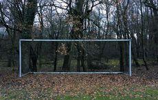 Ein Tor im Wald…