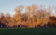 Sonnenschein und Herbstidylle am Rande der Stadt…