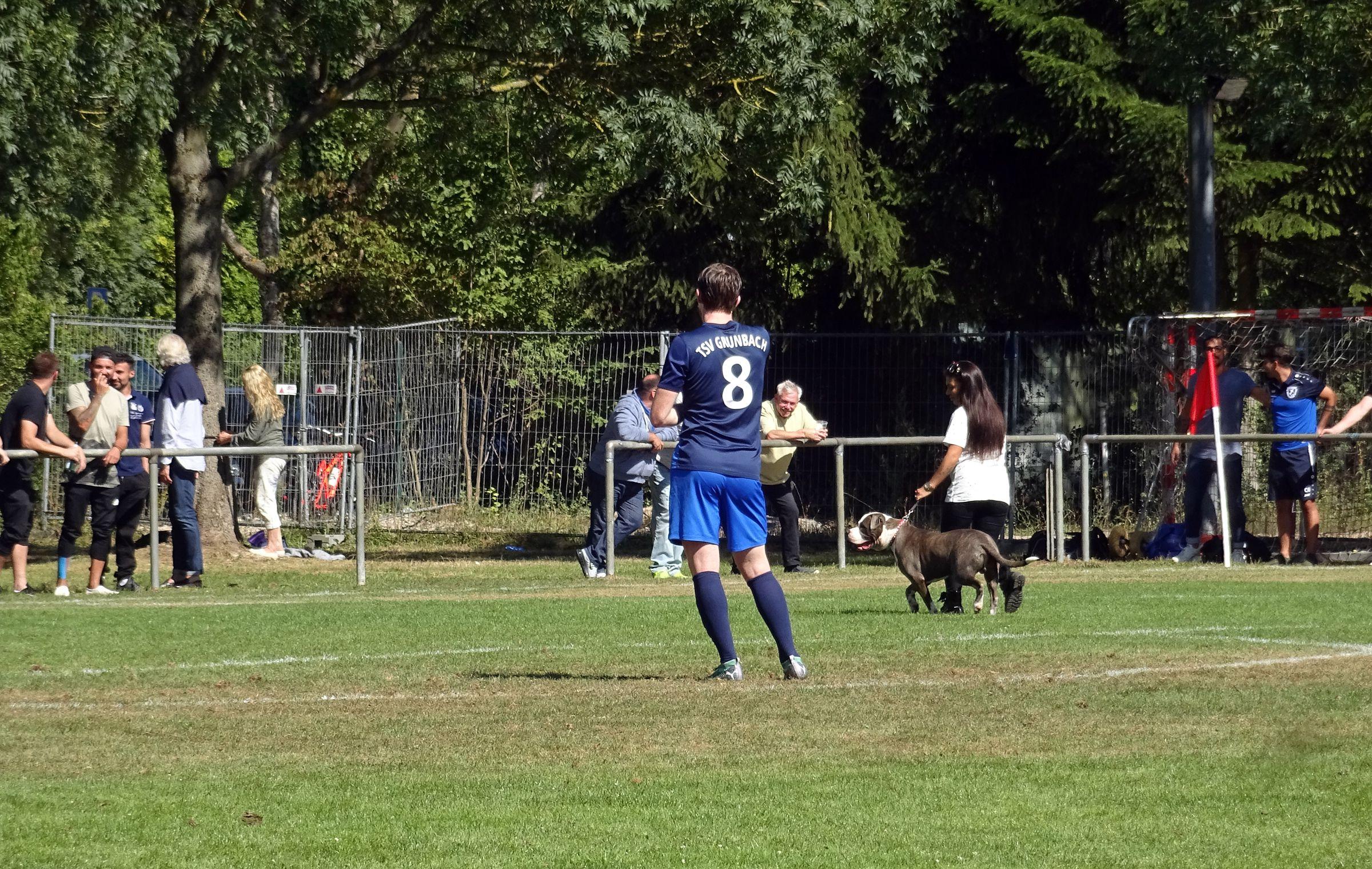 Nur in der Landesliga: Ein fieser unförmiger Kampfhund läuft während des Spiels auf den Rasen und muss eingefangen werden…