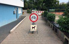 Mit Radfahrern und Hunden…