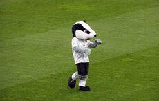 Hardi hatte nur vor dem Spiel Anlass für ein Tänzchen…