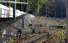 Die verrottende alte Tribüne oberhalb der ehemaligen Radrennbahn.